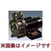 三相電機(SANSO) 25PSPZ-2031B 自吸式ヒューガルポンプ 60Hz 単相100V 25PSPZ-2031B