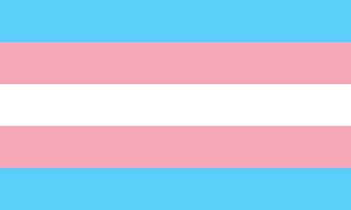 Durabol Bandera de TRANSEXUAL 150 x 90 cm Satén DE Arcoiris Orgullo Gay