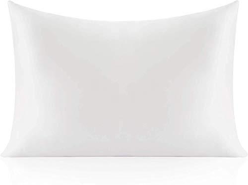 Ruike - Funda de almohada de seda natural, hipoalergénica, 22 momme, 100% seda, 600 hilos, tamaño estándar 50 x 75 cm, con cremallera oculta