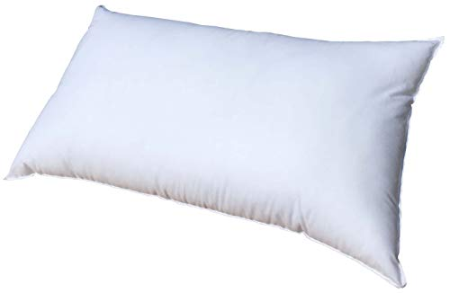 11 x 16 pillow form - 1