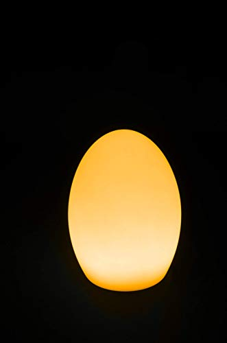 AFX LIGHT LED EGG tafellamp LED RGBw in ovale vorm