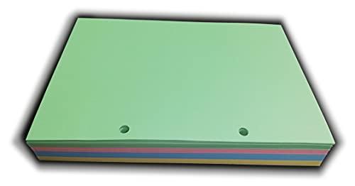200 hojas de colores (50 x 4 col.) 90 g - Recambio con 2 agujeros - Formato A5 14,5 x 20,5 cm DIN A5 para Oganizer con 2 anillas
