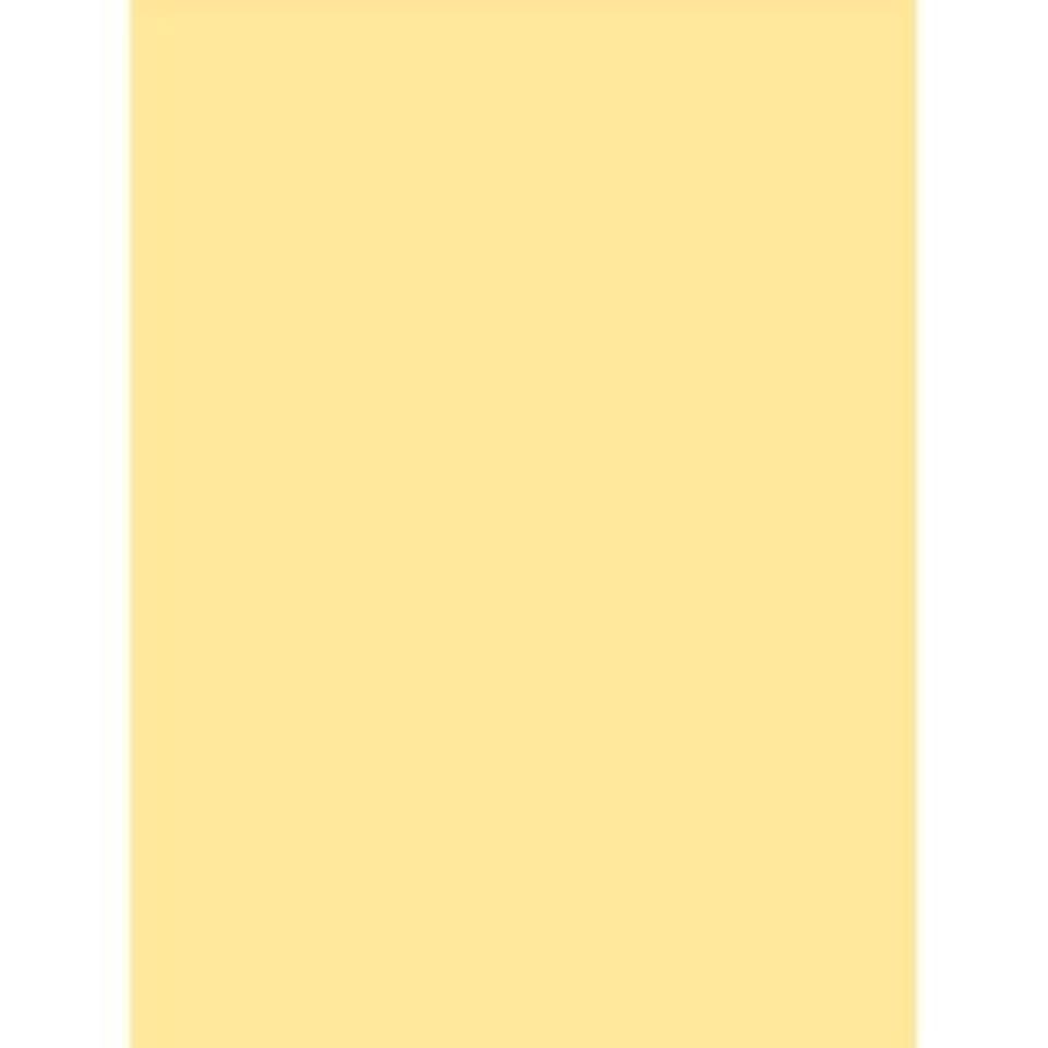 たぶん回転する脱走JTX カラー用紙冊 B5 クリーム A170J-3