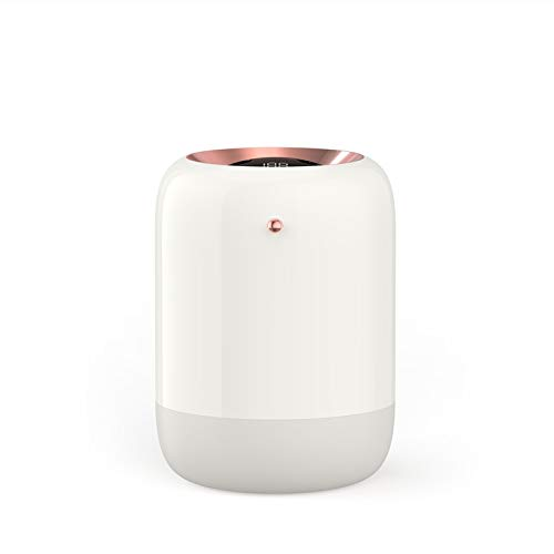 TRYING New M09 Double Spray humidifier USB Charging LED Digital UV Sterilization Wireless Portable car humidifier RMCX (Color : White, Size : USB Ordinary Version)