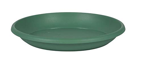 EDA Marina - Platos para macetas (40 cm), Color Verde