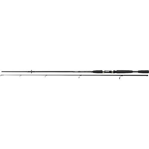 Cormoran i-Cor Black 1.80m 5-20g Spinnrute