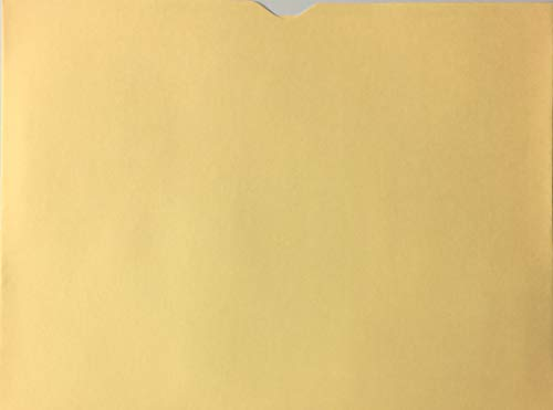 "A Plus Blank Vehicle Dealer File Jacket Buff, 12"" x 9"", Quantity 100"
