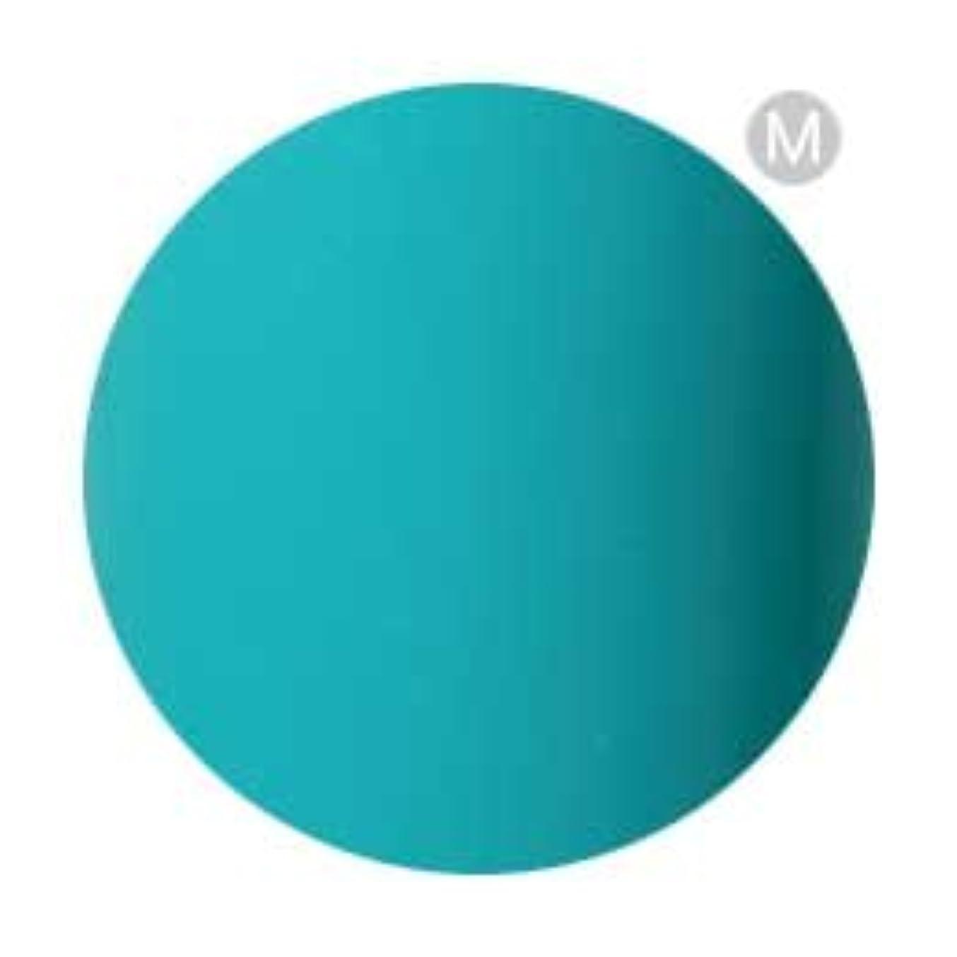 ミリメーター受け継ぐ処方するPalms Graceful カラージェル 3g 078 ターコイズグリーン