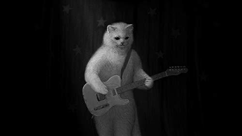 YDPTYANG DIY Ölfarbe Nach Anzahl Kit Weiße Katze Spielt Gitarre DIY Handgemalt Ölgemälde Geschenk Holzrahmen Home Haus Dekor 40X50cm