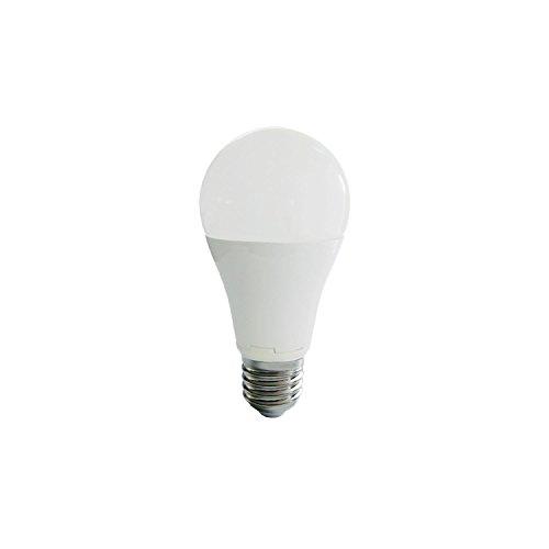 Nityam Ampoule LED Globe E27-12W