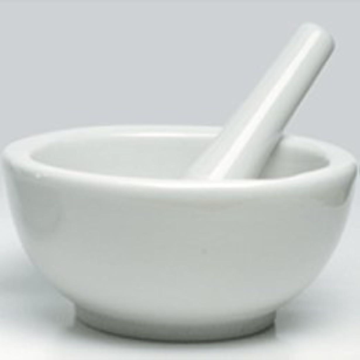 病気迫害する染料乳鉢L 乳棒付き