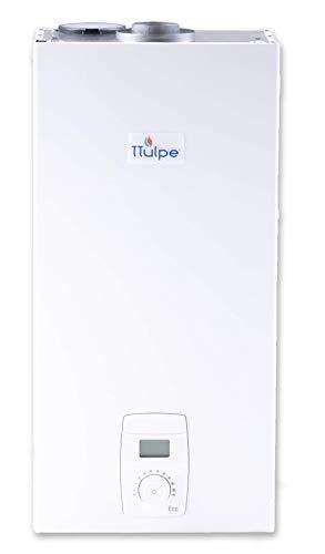 TTulpe C-Meister 14 P37 Eco ErP - Calentador a gas estanco propano butano (37 MBar) blanco