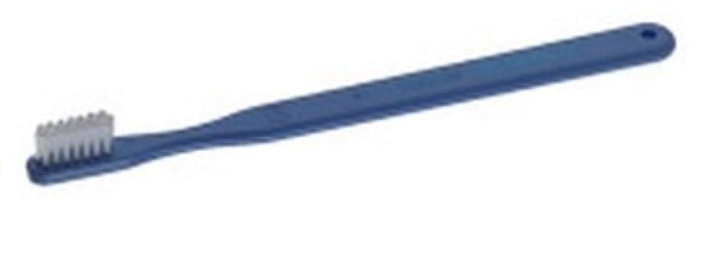 クモマトロン定義するPROXIDENT プロキシデント コンパクトヘッド レギュラータフト #611