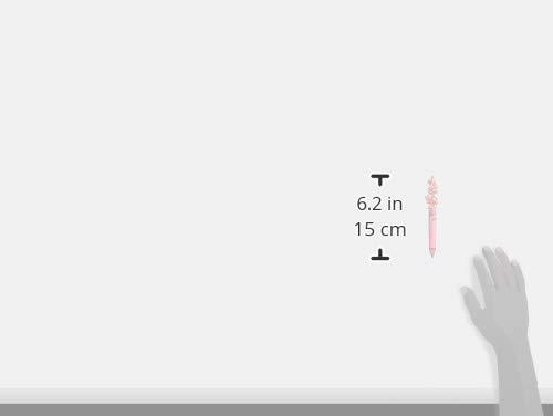 サンリオ(SANRIO)マイメロディフリクションボール32.5×2.5×14.5cmポリカーボネートN-1710-027251