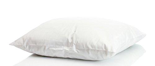 Welt-der-Träume Daunenkissen | 40x40 cm | Füllgewicht: 300 Gramm | inkl. Kissenbezug aus 100% Baumwolle | Kopfkissen 40x40 Daunen | Federkissen | kein Lebendrupf | weiß | 1 Stück