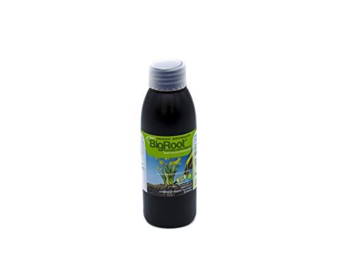 BIGROOT®. Aminoácidos/Péptidos/Algas; Enraizante, activador Bioestimulante. Potenciador natural de las raíces. Mejora la calidad plantas, frutos y flores. Ecológico (2.000 m2). Especial Huerto/Jardín