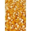 Azur Confiserie Maíz para Pop Corn Listo para éclater Bolsa 3kg