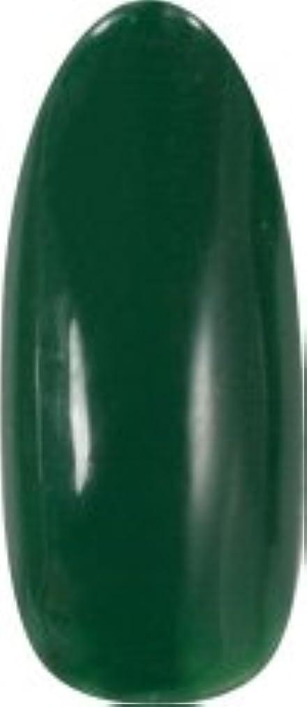 ヒールピラミッド傷つきやすい★para gel(パラジェル) アートカラージェル 4g<BR>AM27 モスグリーン