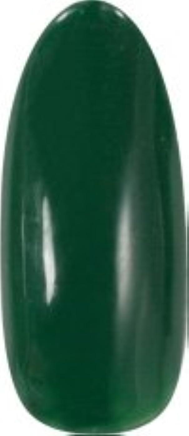 ねじれ痴漢純粋な★para gel(パラジェル) アートカラージェル 4g<BR>AM27 モスグリーン