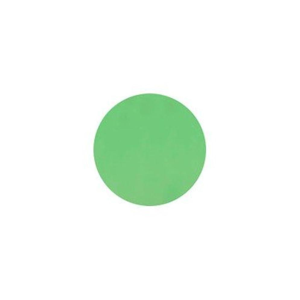 ニッケル学習少しプティール カラージェル ポップ P19 ソフトネオングリーン
