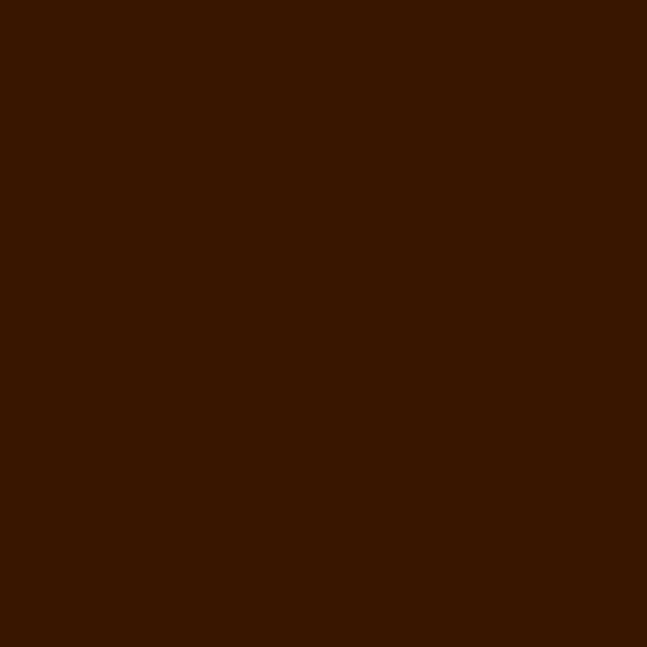 Craft E Vinyl - Matte Brown 12