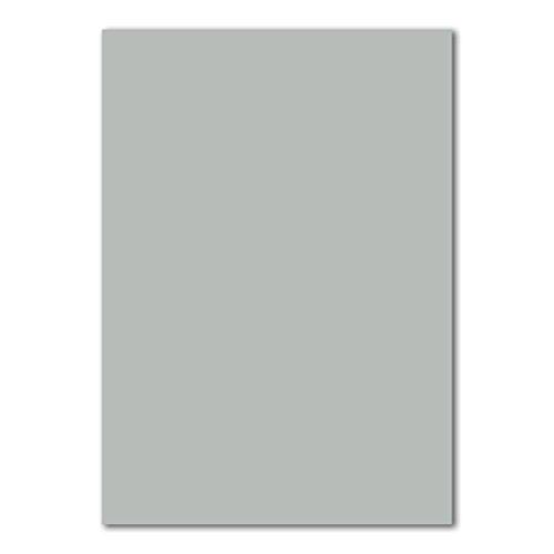 50 DIN A4 Papierbogen Planobogen -Hellgrau - 160 g/m² - 21 x 29,7 cm - Bastelbogen Ton-Papier Fotokarton Bastel-Papier Ton-Karton - FarbenFroh®