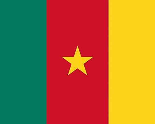 1art1 Kamerun - Flaggen Der Welt Poster Kunstdruck 50 x 40 cm
