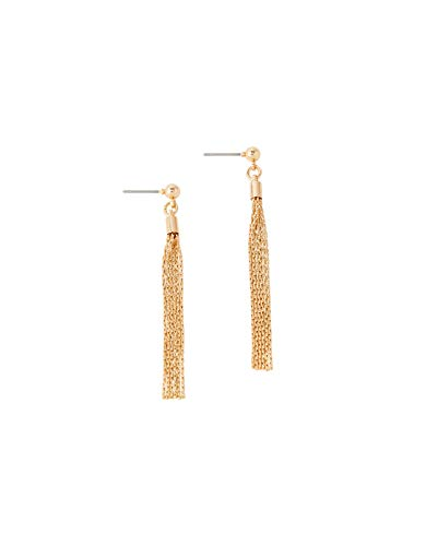 Accessorize Slinky Chain Drop Earrings