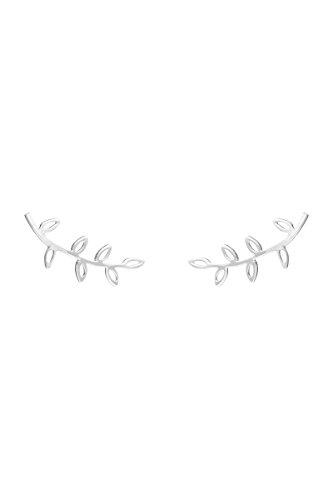 Córdoba Jewels | Ohrstecker in 925Sterling Silber. Design Zweig Silver