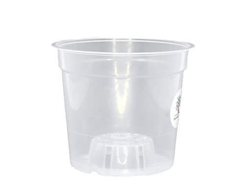12 vasi per orchidee per la coltivazione e la cura di orchidee, in plastica, trasparente