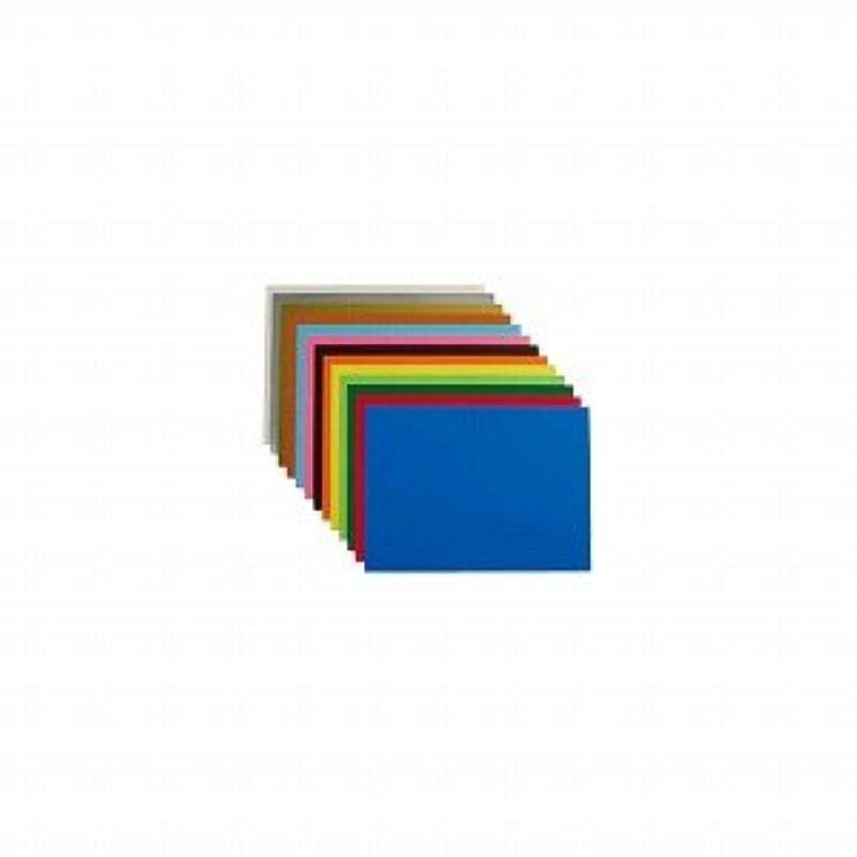 徹底的にまさにキャプションアピカ 学用品 カラー工作用紙 L判?4切 オレンジ Cコウサク-46 / 50セット