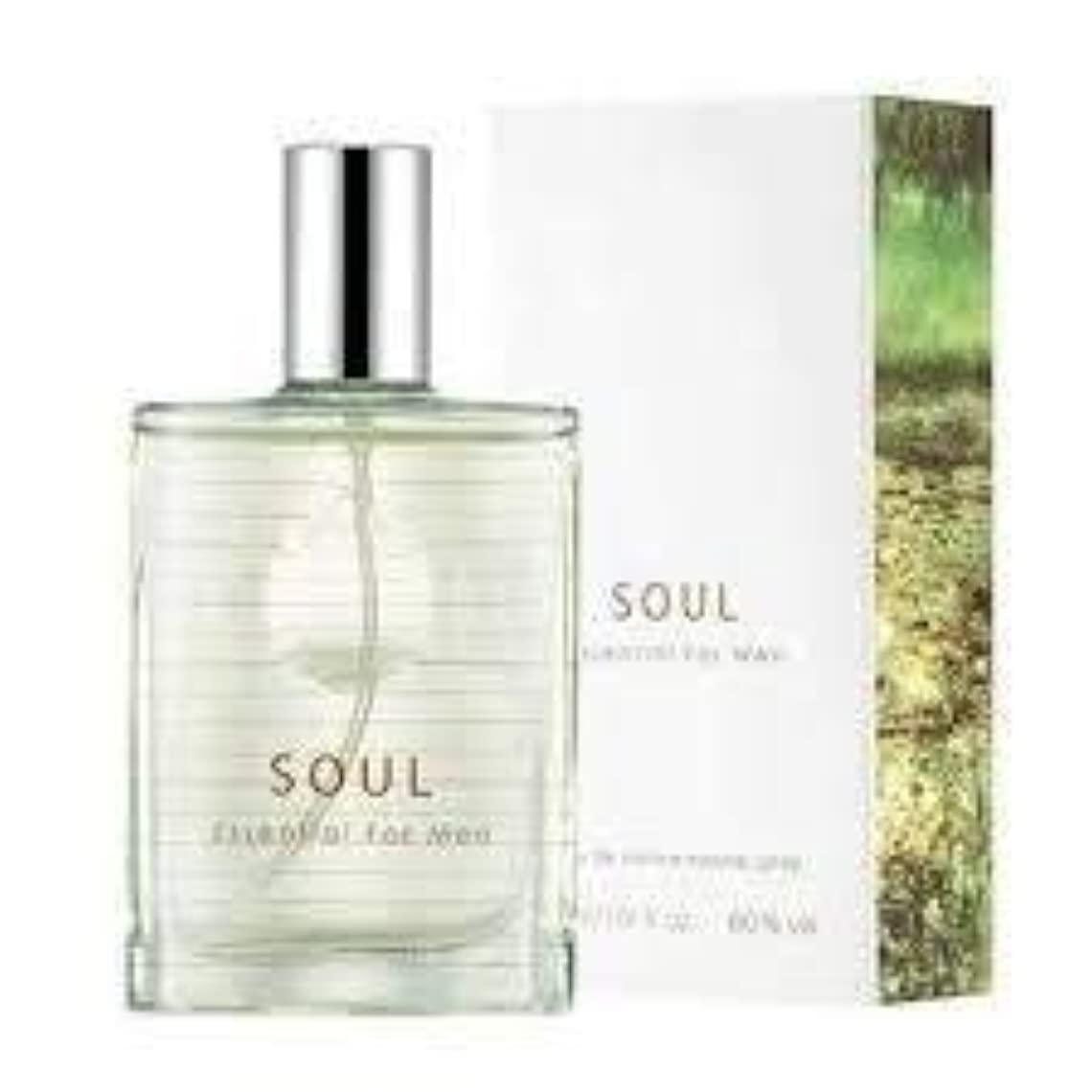 栄養特異性かごThefaceshop Soul Essential For Men 30ml