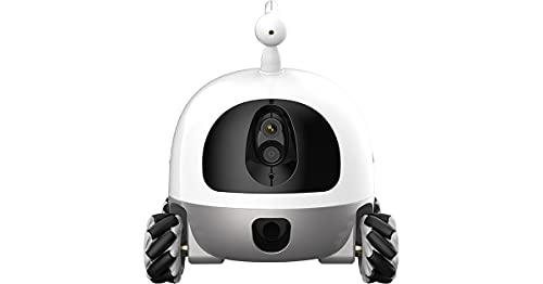Rocki Pet Robot - Compañero conectado para perro y gato