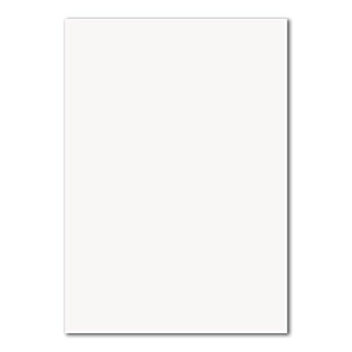 50 DIN A4 Papierbogen Planobogen -Hochweiß - 160 g/m² - 21 x 29,7 cm - Bastelbogen Ton-Papier Fotokarton Bastel-Papier Ton-Karton - FarbenFroh