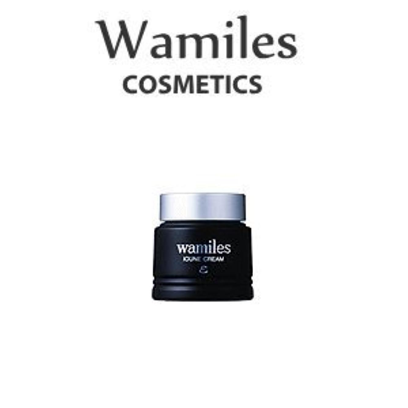 圧倒的にじみ出るトリプルwamiles/ワミレス ベーシックライン イオンヌ クリーム 53g 美容 保湿
