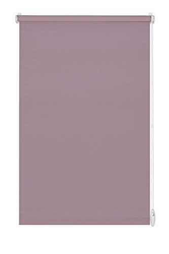 GARDINIA Estor Enrollable para Pegar o Pegar, luz de día, Opaco, Todas Las Piezas de Montaje Incluidas, Easyfix Rollo Uni, Color Rosa nacarado, 75 x 150 cm (Ancho x Alto)
