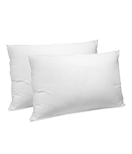 Pacific Coast Down & Feather Lyocell Fill King Pillow Set (2) Found in Many Marriott Hotels