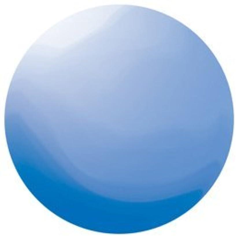 誤解を招くふける系統的KOKOIST カラージェル E-134 4g ロシアンブルービーチグラス