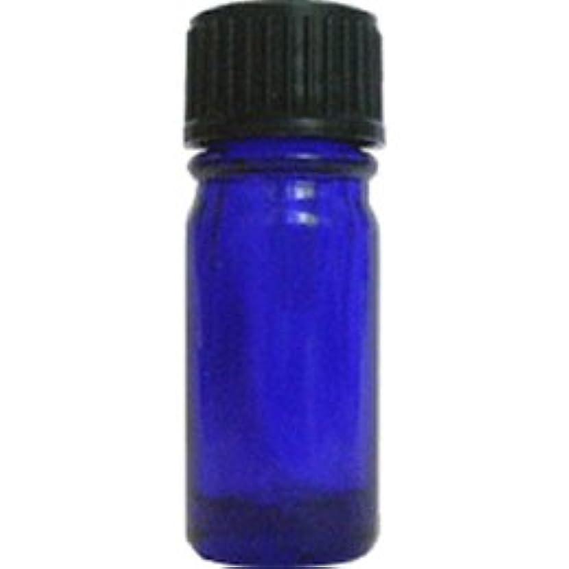 寛容な資本悪意青色遮光ビン 5ml (ドロッパー付)