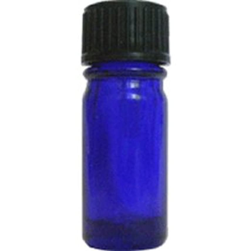 ニックネーム側面放牧する青色遮光ビン 5ml (ドロッパー付)