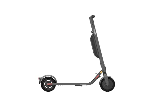 Ninebot KickScooter E45D Powered by Segway mit Straßenzulassung