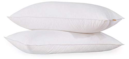 puredown® Lujosas Almohadas de Plumón de Ganso Suaves Forro de 100% Algodón Lavable a Máquina 48x74cm Paquete de 2