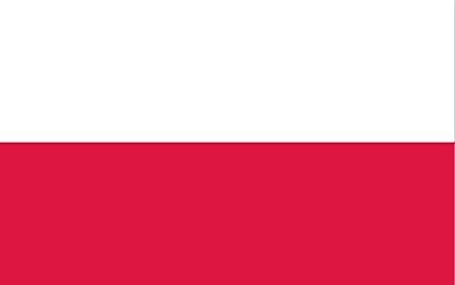 Bandiera della Polonia 5 * 3ft / 150 * 90cm Bandiera in Poliestere Ideale per Esterni e Interni Grande Bandiera Polacca
