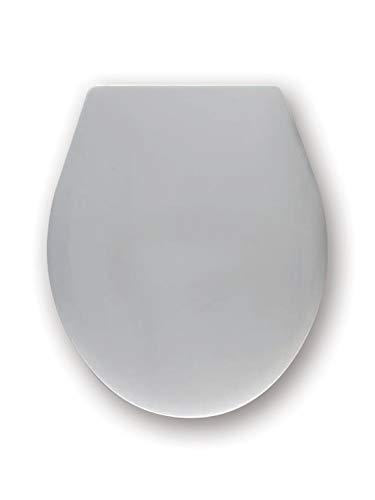 Haro WC-Sitz Passat C0202Y mit SoftClose Deckel und Excenterscharnier aus edelstahl, 1 Stück, ägäis, 512134