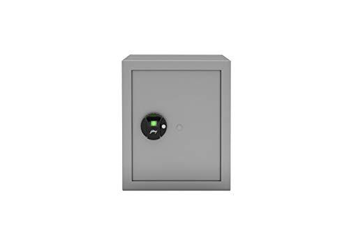 Godrej Security Solutions Forte Pro Bio Home Locker (40L)