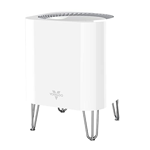 Essential Air Purifier for Home