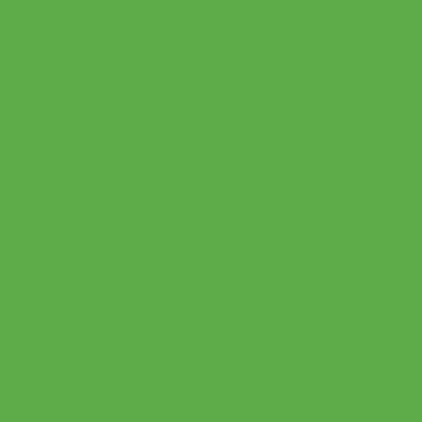 Craft E Vinyl - Matte Lime Green 12