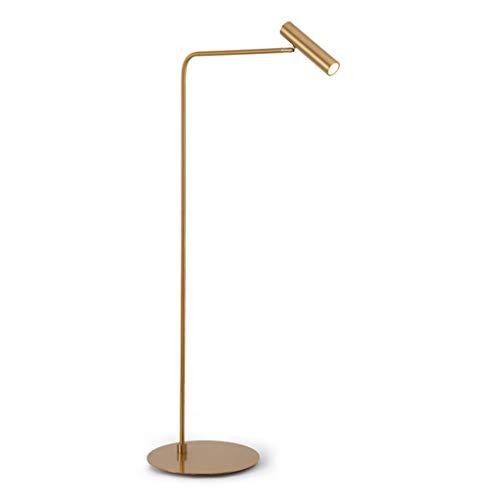 Lampes de chevet Lampadaire en Métal Salon Étude De Personnalité Personnalité Créative Chambre Pêche Moderne Minimaliste Lampadaire (Color : Gold, Size : 40 * 140cm)