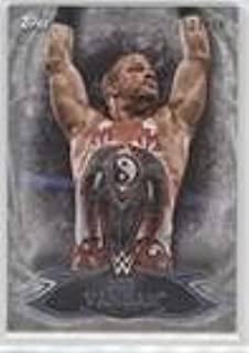 Rob Van Dam #21/25 (Trading Card) 2015 Topps WWE Undisputed - [Base] - Silver #16