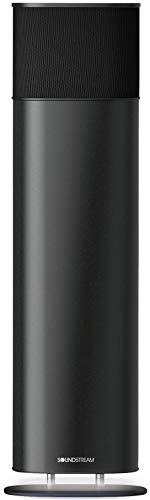 Soundstream Sound Tower Portable Bluetooth Speaker - Large